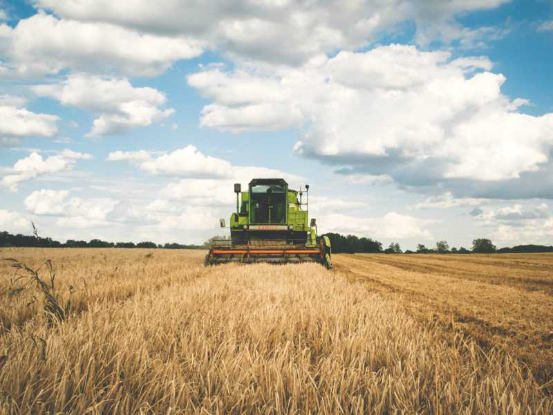 Food and Agriculture Industry Insights